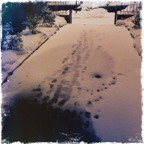 Photo of snow with footsteps